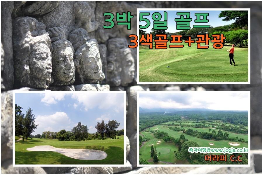 3박5일 골프.jpg